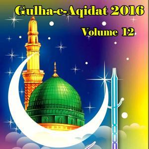 Gulha-e-Aqidat 2016, Vol. 12