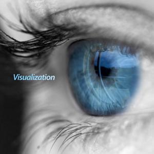 Visualization (Long Version)