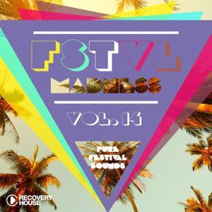 FSTVL Madness, Vol. 14 - Pure Festival Sounds