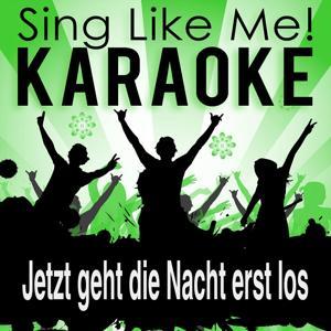 Jetzt geht die Nacht erst los (Karaoke Version)