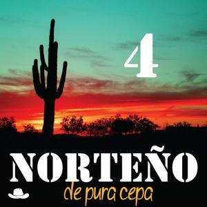 Norteño de Pura Cepa, Vol. 4