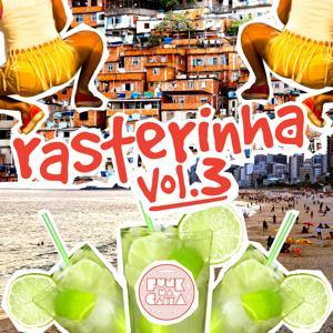 Rasterinha, Vol. 3