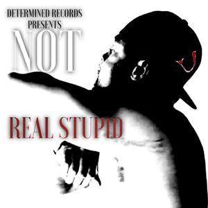 Real Stupid