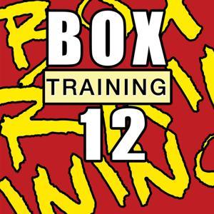 Box Training 12
