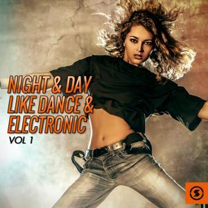 Night & Day Like Dance & Electronic, Vol. 1