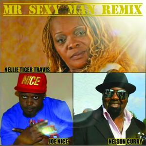 Mr. Sexy Man (Remix) [feat. Nelson Curry & Joe Nice]