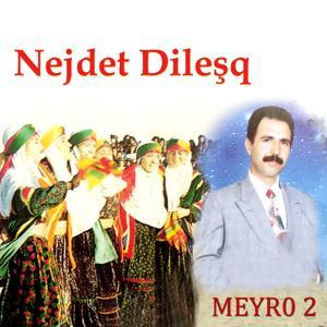 Meyro, Vol. 2