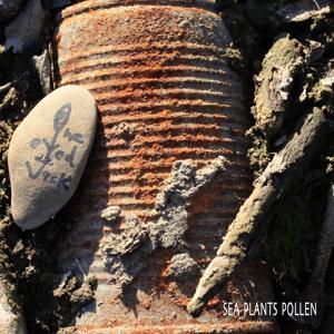 Sea Plants Pollen