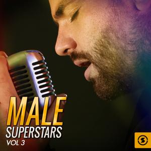 Male Superstars, Vol. 3