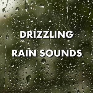 Drizzling Rain Sounds
