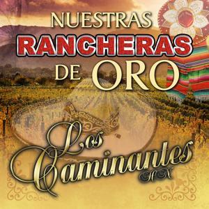 10 Rancheras