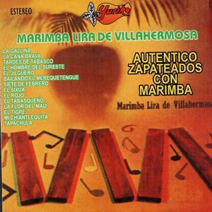 Autentico Zapateados Con Marimba