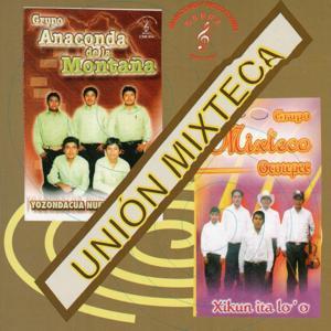 Union Mixteca