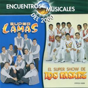 Encuentros Musicales ( El Show De Los Vasquez)
