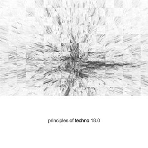 Principles of Techno, Vol. 18