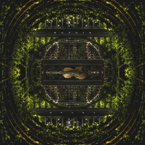 The Violin Song (Dj Antonio & Astero Remix)