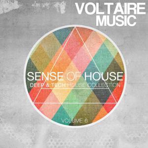 Sense Of House Vol. 6