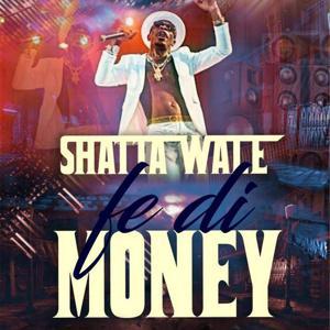 Fe Di Money