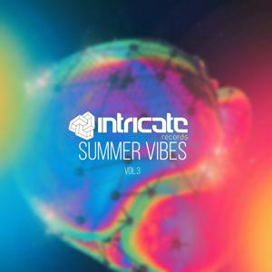 Intricate Records Summer Vibes, Vol. 3