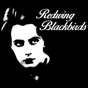 Redwing Blackbirds