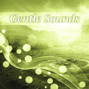 Gentle Sounds – Nature Sounds for Relaxation, New Age Piano Music, Soothing Waves, Chillout