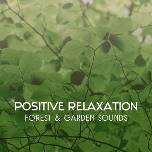 Positive Relaxation – Forest & Garden Sounds, Birds Singing, Natural Music for Deep Meditation