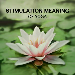 Stimulation Meaning of Yoga – Healing Sounds for Self Improvement, Deep Concentration & Brain Meditation