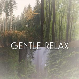 Gentle Relax – Peaceful Thoughts with Calm Sounds for Yoga, Massage, Pleasent Mood, Nature Stress Relief