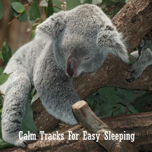 Calm Tracks For Easy Sleeping