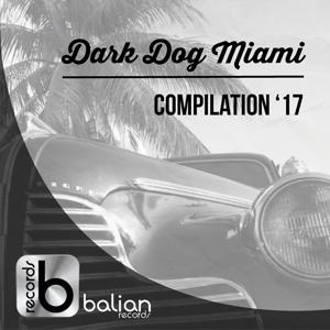 Dark Dog Miami