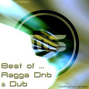 Best of Ragga Drum & Bass / Dub