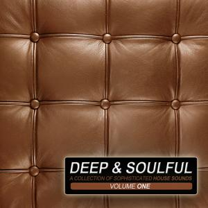 Deep & Soulful Vol.1 - A Collection Of Sophisticated House Sounds
