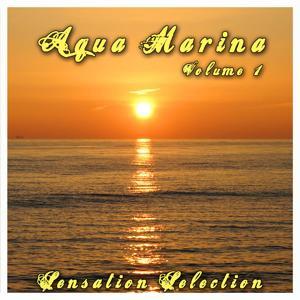 Aqua Marina 1 - Sensation Selection