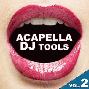 Acapella DJ Tools Vol.2