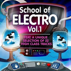 School of Electro, Vol.1 (22 High Class Tracks of Musicians Graduation)