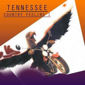 Country Feeling, Vol.1