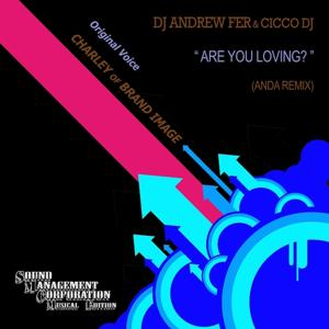Are You Loving (Remix)