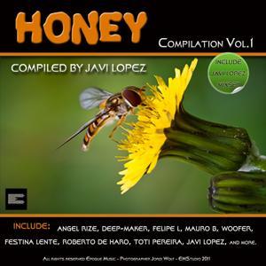 Honey Compilation, Vol.1