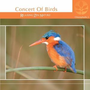 Chlorophylle II Concert of Birds