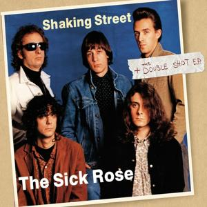 Shaking Street / The Double Shot